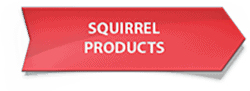 squirrelproducts