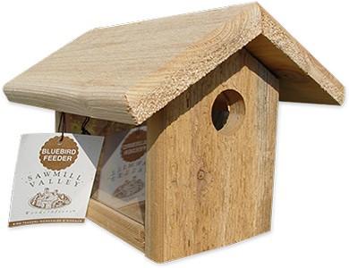 bluebird-feeder-393x300