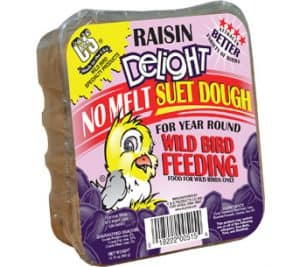 Raisin Delight No Melt Suet Dough