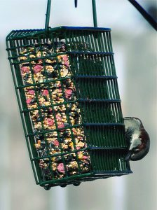 Seed Snaks™ for Wild Birds in Feeder